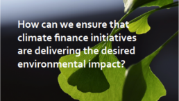 How can we ensure that climate finance initiatives are delivering the desired environmental impact?