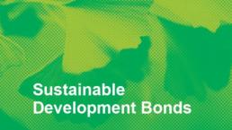 Sustainable Development Bonds Can Help Fill the $2.5 trillion Investment Gap in the Sustainable Development Goals